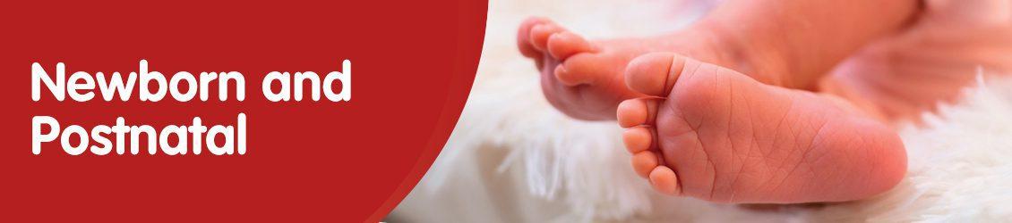 Newborn & Postnatal